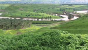 The Jordan River Valley. Photo: Ram Aviram.