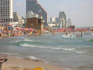 The Tel Aviv Promenade/beach. el Aviv claims to be the friendliest city in the world for dogs. Photo: Wikipedia.