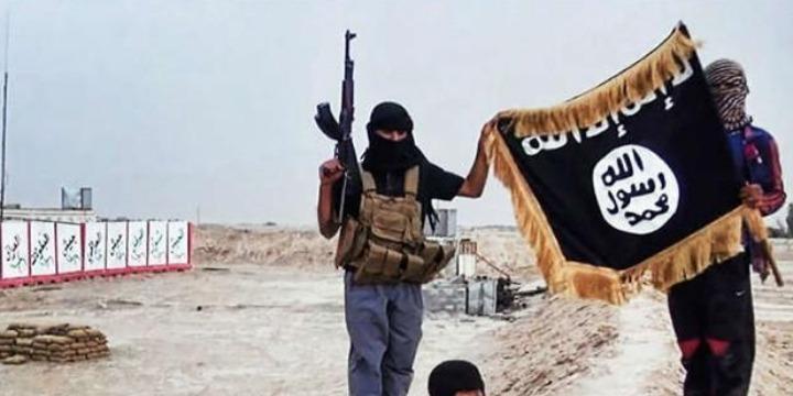 Image result for isis jihadists